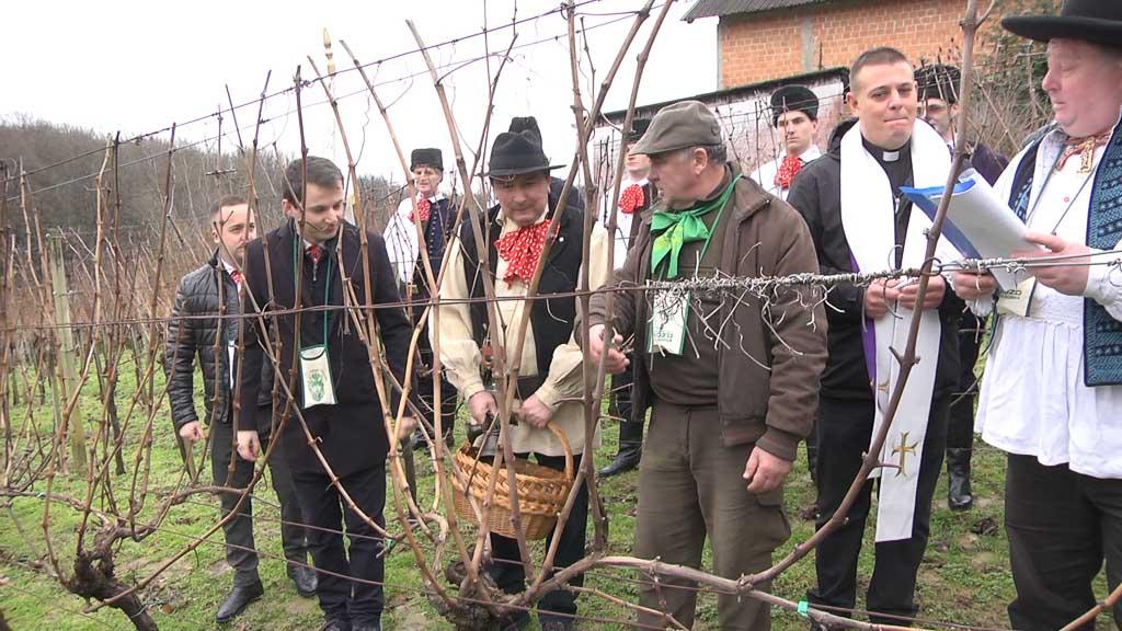 Proslavljeno Vincekovo za dobru vinogradarsku godinu